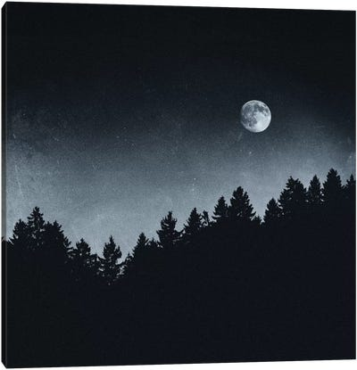 Under Moonlight Canvas Art Print