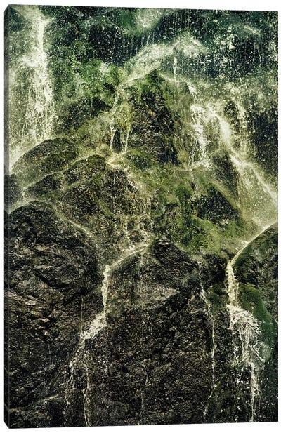 Fresh Water Canvas Art Print