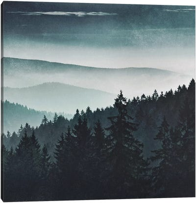 Mountain Light Canvas Art Print