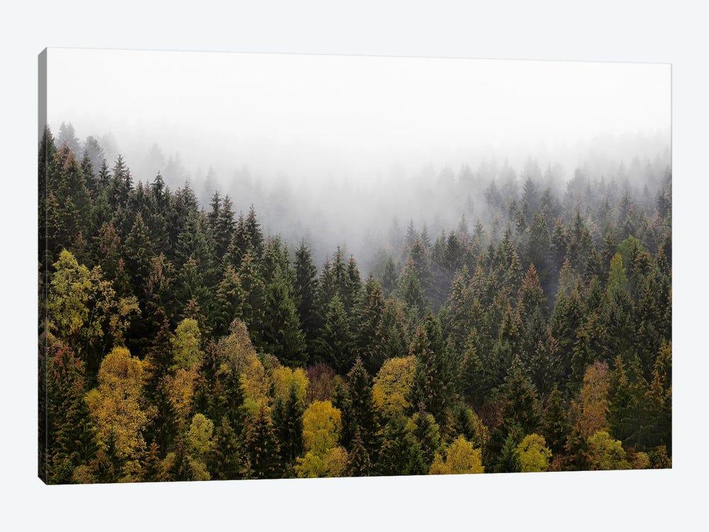 Autumn Love by Tordis Kayma 1-piece Canvas Print