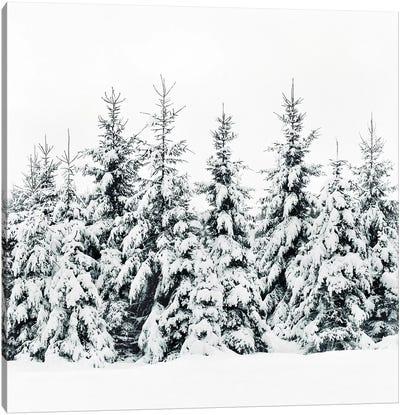 Snow Porn Canvas Art Print