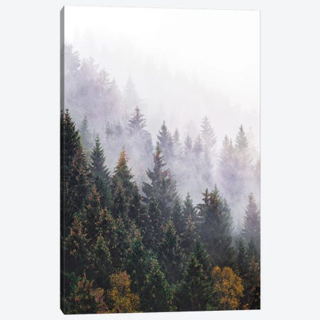 The Big Calm Canvas Print #TDS39} by Tordis Kayma Canvas Art