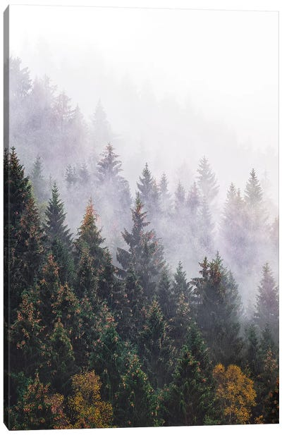 The Big Calm Canvas Art Print