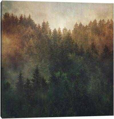 Asleep Canvas Art Print