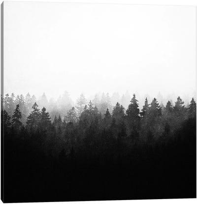 A Wilderness Somewhere II Canvas Art Print