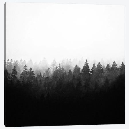 A Wilderness Somewhere II 3-Piece Canvas #TDS46} by Tordis Kayma Canvas Art