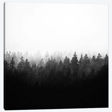 A Wilderness Somewhere II Canvas Print #TDS46} by Tordis Kayma Canvas Art