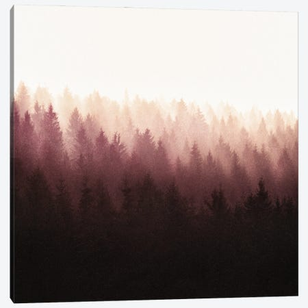Chasing Light Canvas Print #TDS49} by Tordis Kayma Canvas Print