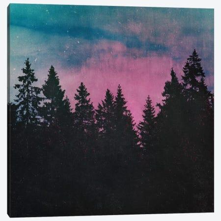 Breathe This Air Canvas Print #TDS4} by Tordis Kayma Canvas Art
