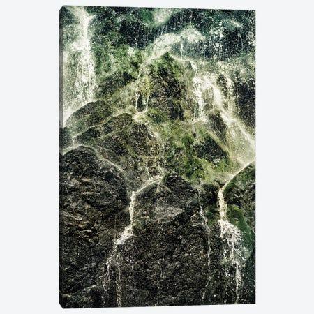 Fresh Water Canvas Print #TDS50} by Tordis Kayma Canvas Artwork
