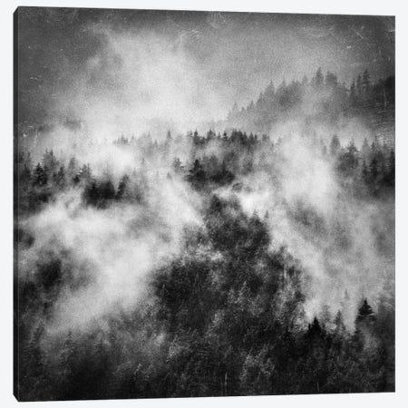 Recently Canvas Print #TDS53} by Tordis Kayma Canvas Art