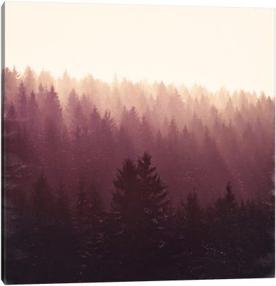 Chasing Light Canvas Art Print