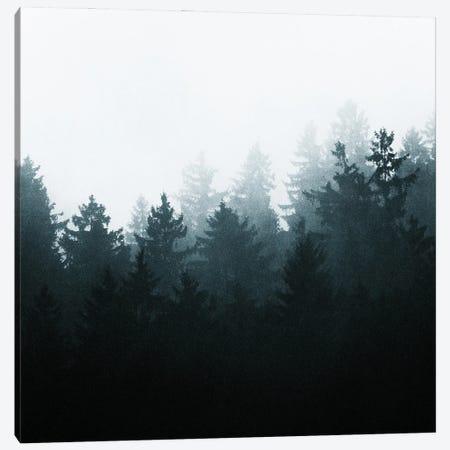 Stay Wild Canvas Print #TDS60} by Tordis Kayma Canvas Print