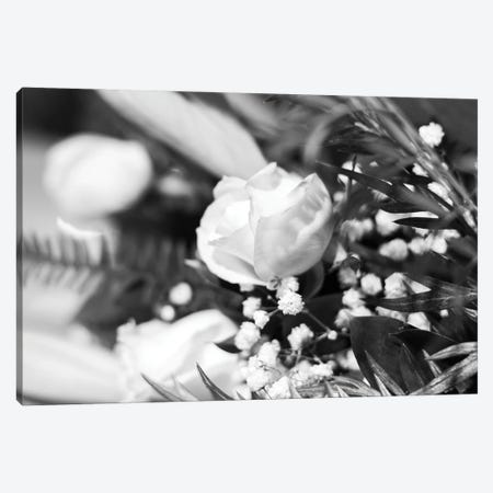 Dramatic Rose In Black And White Canvas Print #TEA12} by Teal Production Canvas Art Print