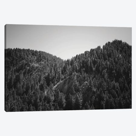 Mountains Peaks In Wyoming In Black And White Canvas Print #TEA16} by Teal Production Canvas Art