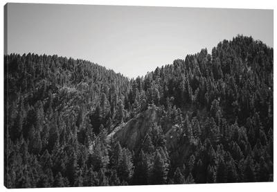 Mountains Peaks In Wyoming In Black And White Canvas Art Print