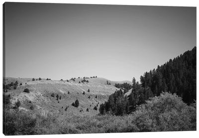 Wyoming Mountain View In Black And White Canvas Art Print
