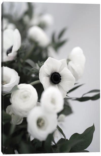 Anemones In Bloom Canvas Art Print