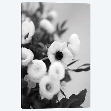 Anemones In Bloom Black And White Canvas Print #TEA27} by Teal Production Canvas Art Print