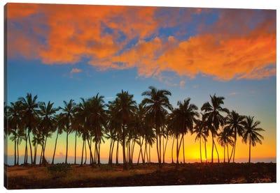 Sunset, Pu'uhonua o Honaunau National Historical Park, Big Island, Hawai'i, USA Canvas Print #TEG10