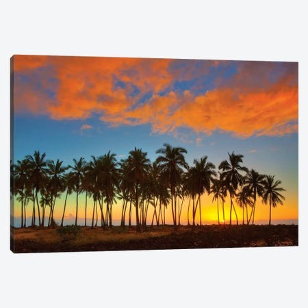 Sunset, Pu'uhonua o Honaunau National Historical Park, Big Island, Hawai'i, USA Canvas Print #TEG10} by Terry Eggers Canvas Print