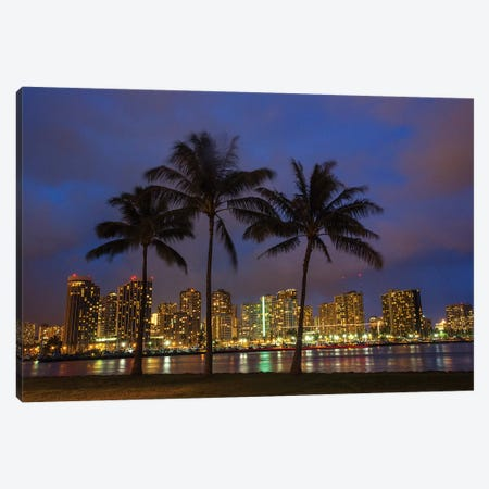 USA, Hawaii, Honolulu, Palm Trees with the night lights of Honolulu 3-Piece Canvas #TEG19} by Terry Eggers Canvas Print