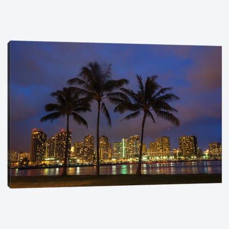 USA, Hawaii, Honolulu, Palm Trees with the night lights of Honolulu Canvas Print #TEG19} by Terry Eggers Canvas Print