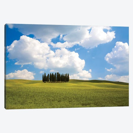 Countryside Cypress Trees, Tuscany Region, Italy Canvas Print #TEG1} by Terry Eggers Art Print