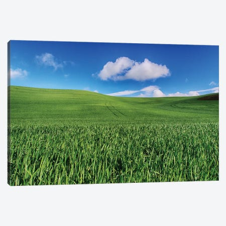USA, Washington State, Palouse Country, Spring Wheat Field and Clouds I Canvas Print #TEG29} by Terry Eggers Canvas Wall Art