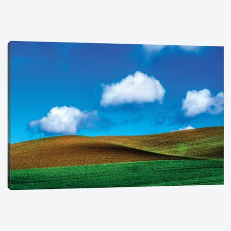 USA, Washington State, Palouse Country, Spring Wheat Field and Clouds II Canvas Print #TEG30} by Terry Eggers Canvas Print