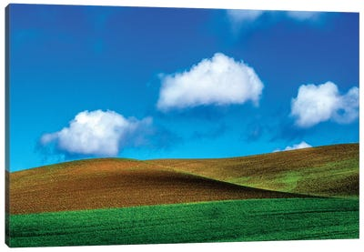 USA, Washington State, Palouse Country, Spring Wheat Field and Clouds II Canvas Art Print