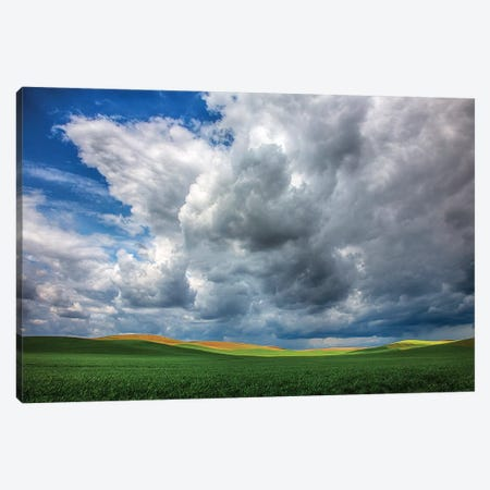 USA, Washington State, Palouse, Spring Rolling Hills of Wheat fields Canvas Print #TEG31} by Terry Eggers Canvas Print