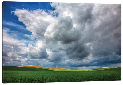 USA, Washington State, Palouse, Spring Rolling Hills of Wheat fields Canvas Art Print