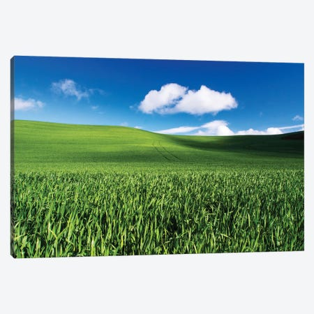 USA, Washington State, Palouse, Spring Wheat Field and Clouds Canvas Print #TEG32} by Terry Eggers Canvas Print