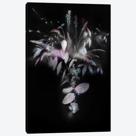 Natural Veil IV (Negative) 3-Piece Canvas #TEI100} by Teis Albers Canvas Print
