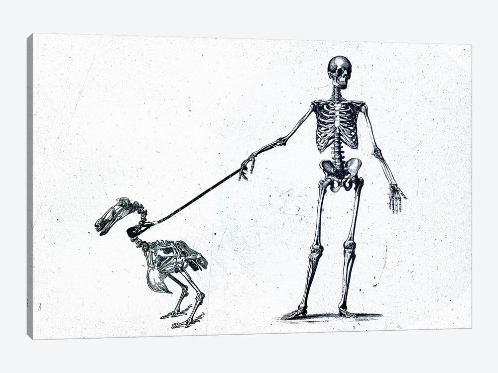 Walking My Dodo by Teis Albers 1-piece Canvas Artwork