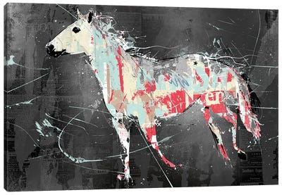 Torn Horse Canvas Print #TEI39