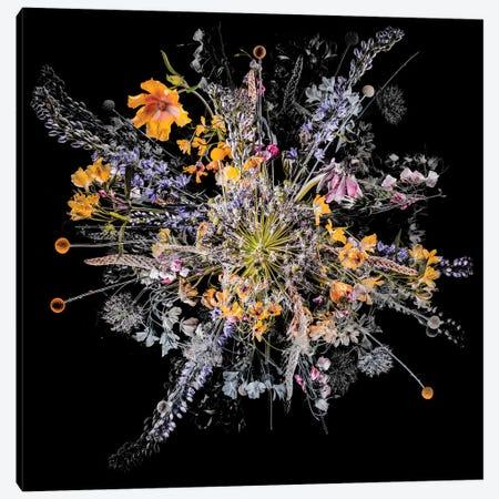 Bouquet III Canvas Print #TEI82} by Teis Albers Canvas Art