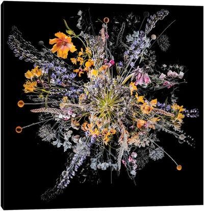Bouquet III Canvas Art Print