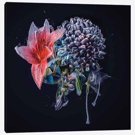 Bouquet VI Canvas Print #TEI84} by Teis Albers Canvas Print