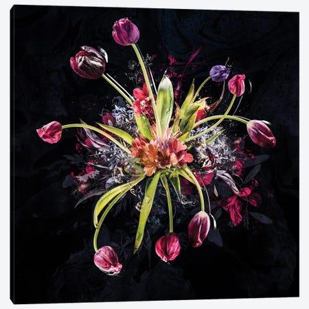 Bouquet XVIII Canvas Print #TEI89} by Teis Albers Canvas Art