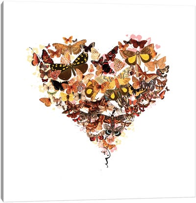 Butterfly Heart Canvas Art Print