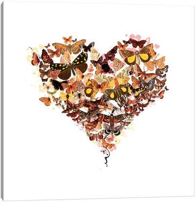 Butterfly Heart Canvas Art Print