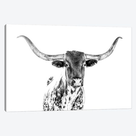 Longhorn Bw Canvas Print #TEJ44} by Teri James Canvas Artwork