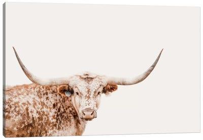 Longhorn On Tan Canvas Art Print