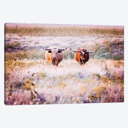 Longhorns In Flowers Canvas Print #TEJ57} by Teri James Canvas Art Print