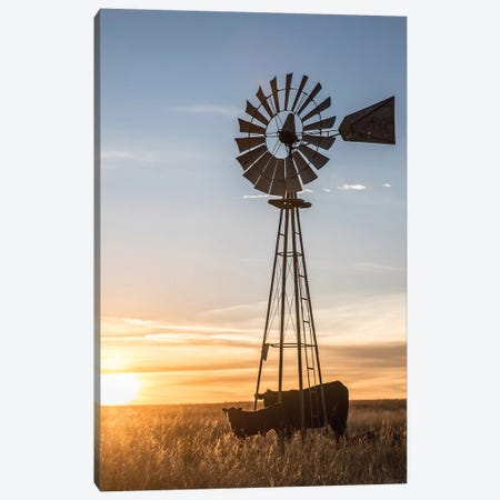 Windmill And Angus Cow Canvas Print #TEJ80} by Teri James Canvas Print