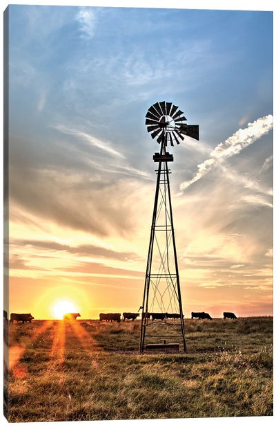 Windmill And Sunburst Big Pasture Canvas Art Print