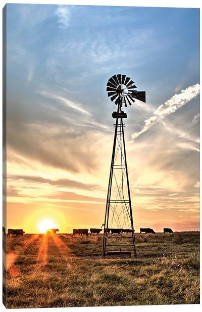 Windmill And Sunburst Big Pasture Canvas Art Print