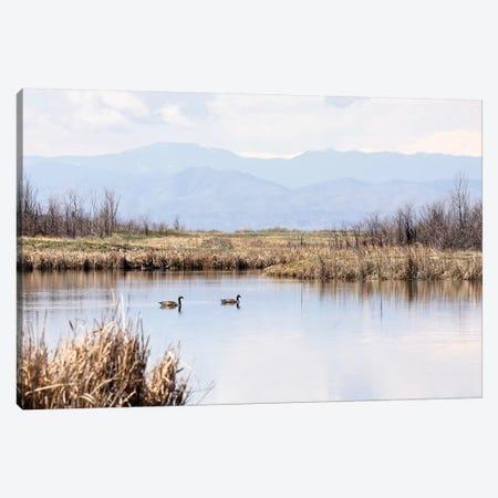 Geese On Mountain Lake Canvas Print #TEJ84} by Teri James Canvas Art